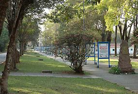 O parque do Instituto Butantan tem quase 50 hectares de área verde